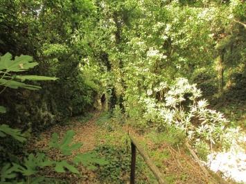 Kounaviano gorge