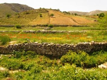 Achentrias - Pyrgos